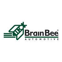 Brain Bee Automotive